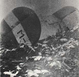 Tail section of B-24 after the crash